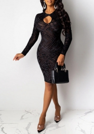 Women Sexy Mesh Cut Out Round Neck Long Sleeve Bodycon Club Dress